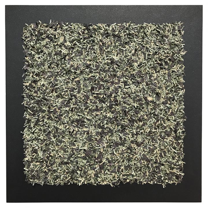 1616.09 Money-chrome (micaceous)