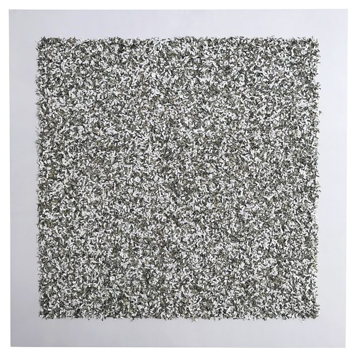 3636.03 Money-chrome (white)
