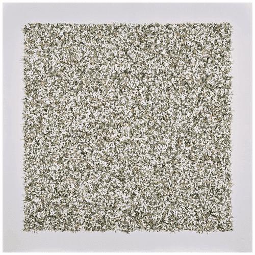 3636.03 Money-Chrome White