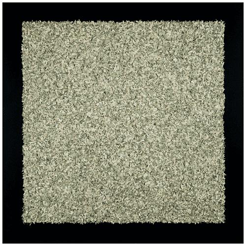 3636.06 Money-Chrome Black